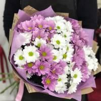 Букет 15 веток разноцветной хризантемы R004